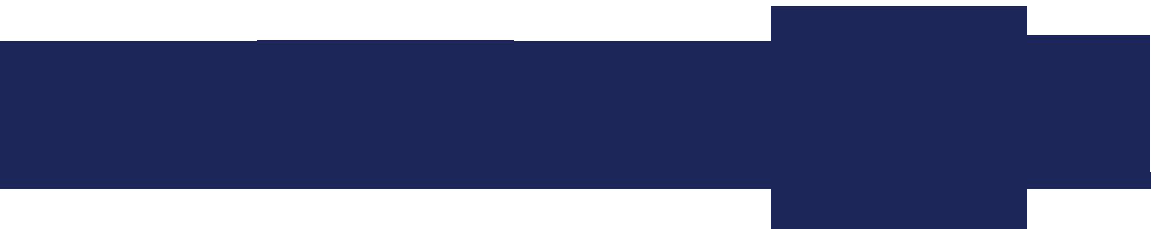 Basement Detective - Logo